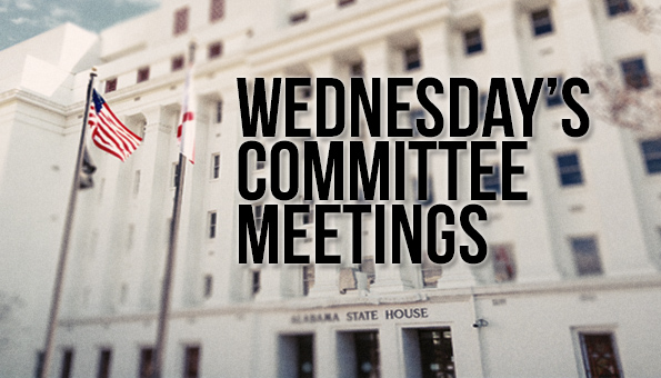 Wednesday Committee Meetings